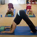 Semi-Private Yoga Class with a friend or partner