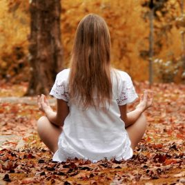 Yin Yoga Autumn Equinox Workshop